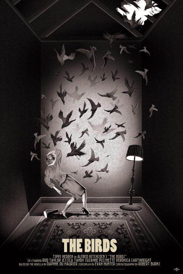 Mondo the birds2
