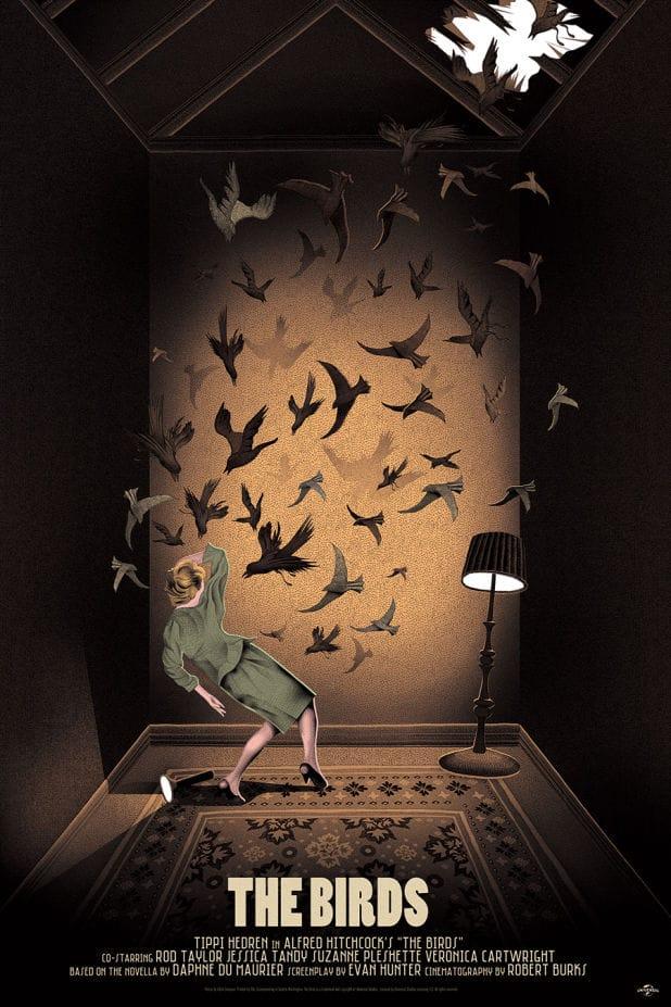 Mondo the birds3