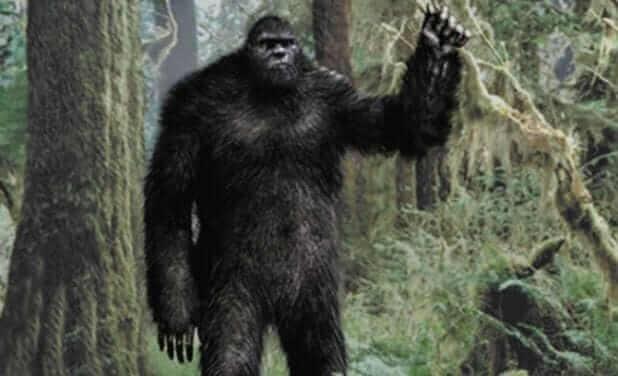 bigfoot-e1439100781391