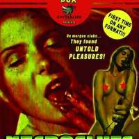 Necrosluts (Review)