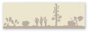 Permaculture // Illustration pour flyer