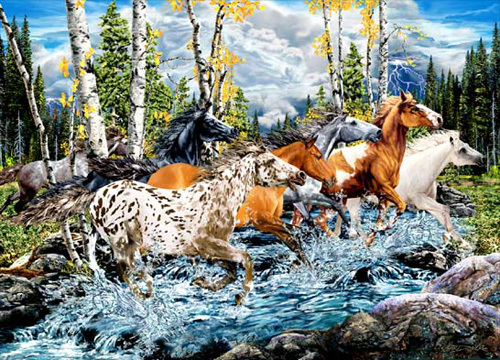 Count The Horses