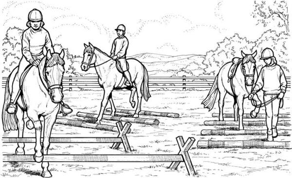 realistic horse coloring pages # 16