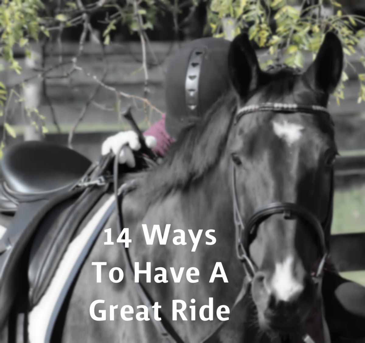 14 Ways To Have A Great Ride