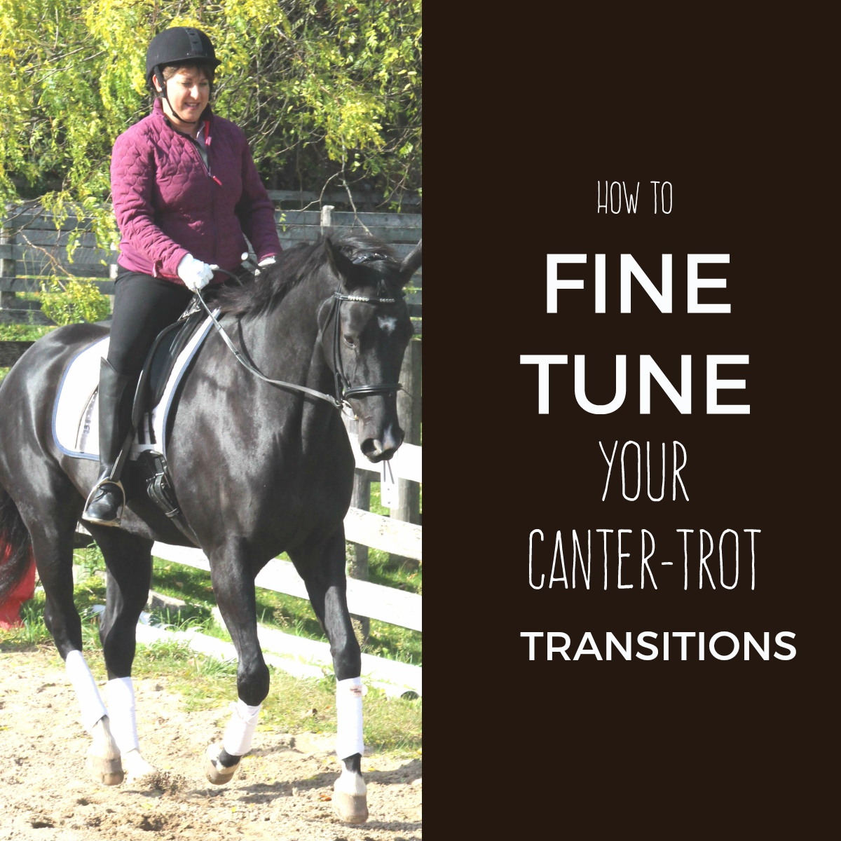 How to Fine Tune Your Canter-Trot Transitions