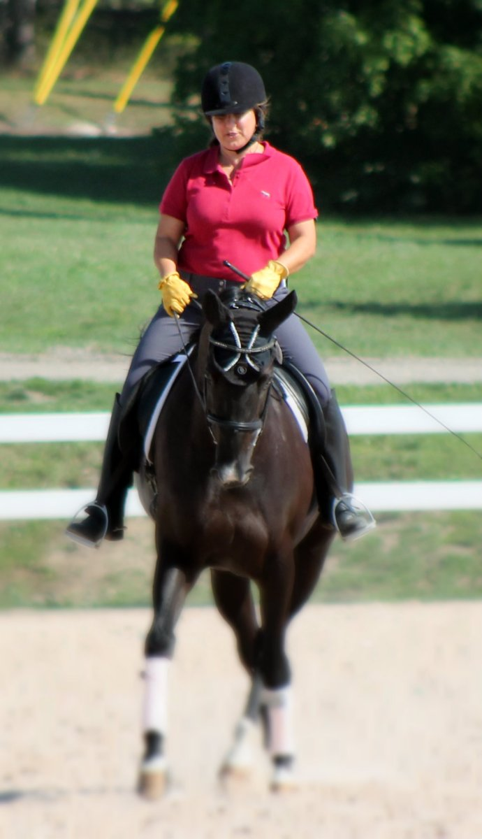 Why We Dressage: The Rider