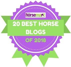 2018 Best Blog Award