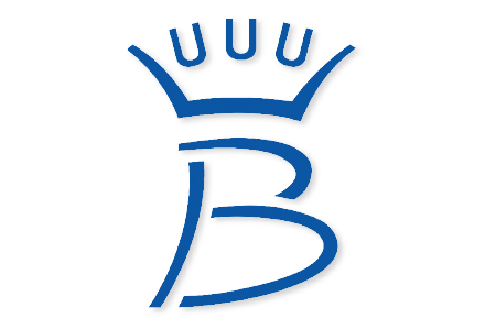 Image result for sbs brand belgian sport horse