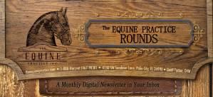 Equine Practice Rounds Newsletter Header