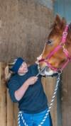 Winning Edge Horsemanship Dentistry, Melissa Buday