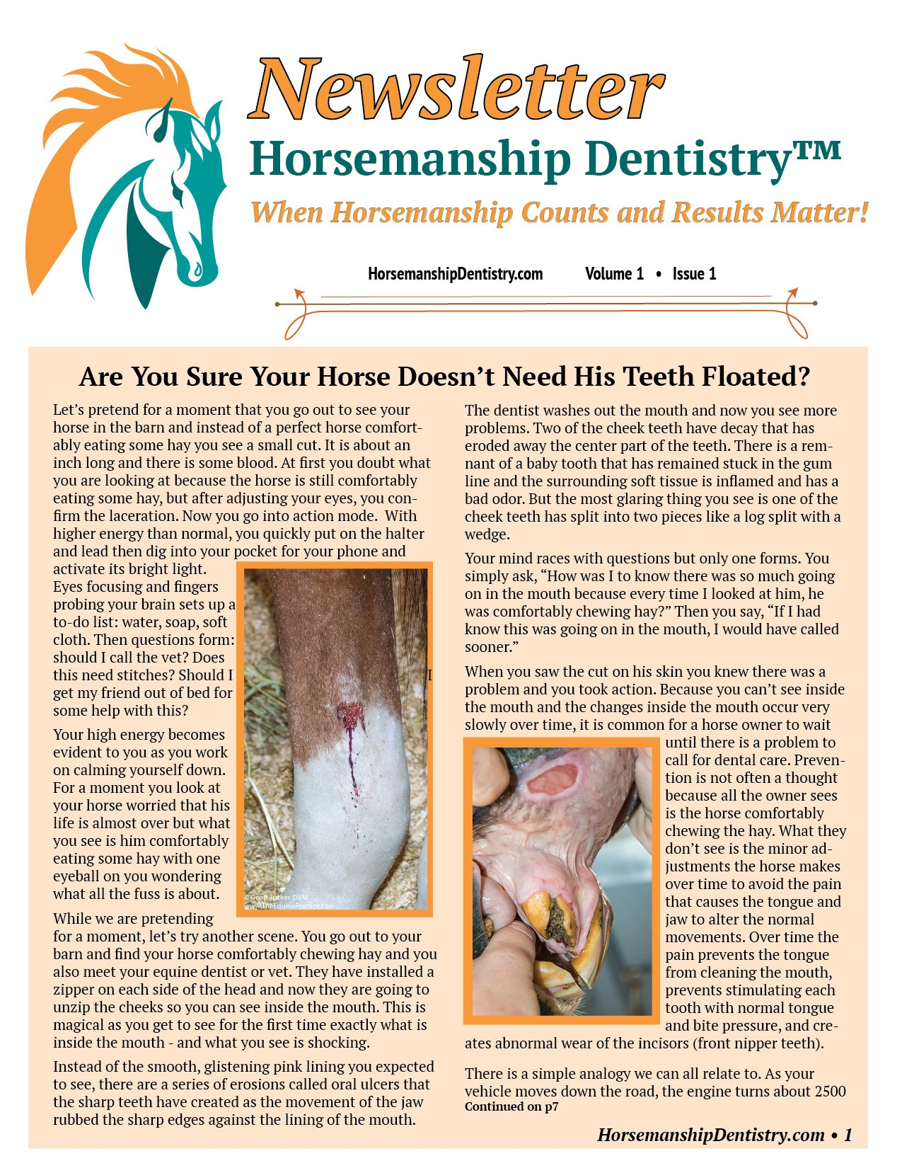 Horsemanship Dentistry Newsletter Volume 1 page 1