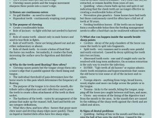 Horsemanship Dentistry Newsletter Volume 1 page 6