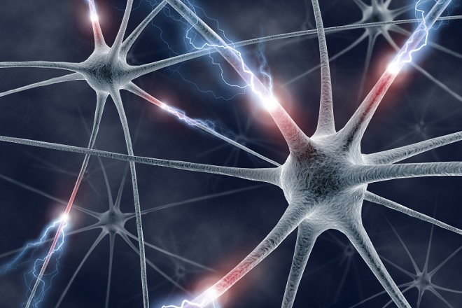 20140331-neurologia-660x440