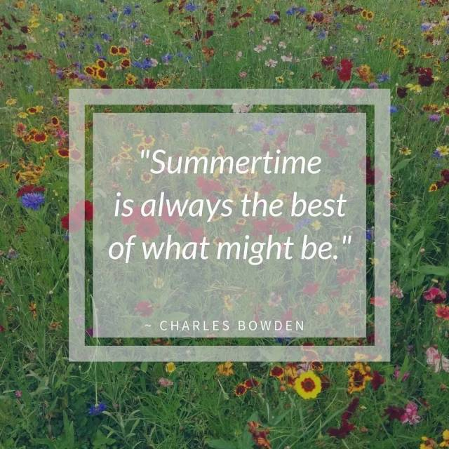 Summertime is always the best     horseradishandhoneyhellip