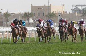 Race field-8243