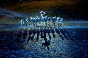 Lorenzo Alltech FEI World Equestrian Games 2014 Normandy