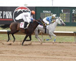 MS Dixie - Cobra_Crow Valley Classic - 08-17-14 - R03 - ARP - Finish