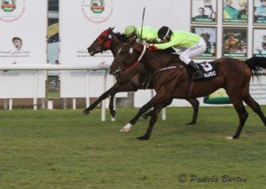 Ameer Al Reef takes a slim lead from Sharaf Al Reef