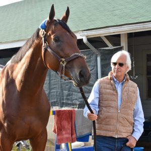 Baffert and Amercian Pharoah Photo Mike Kane