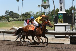 Sandee over the wire on Sand On Fire July 2015