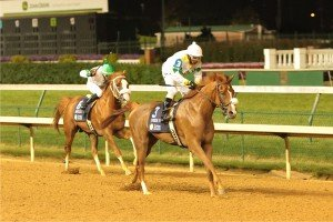 Spin Doctor finishes behind Smoke House