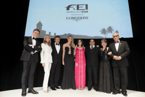 FEI Awards 2015 winners