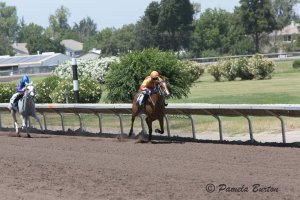 Manuela Slamanig wins 11th Ladies race in Pleasanton on RB Madymoiselle