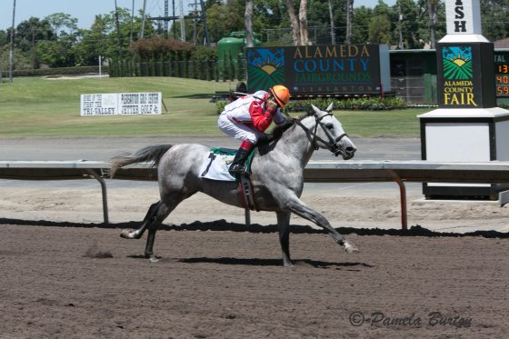 Sand Victor wins in Pleasanton 2016