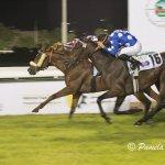 Kalino wins 2015 Richest Race