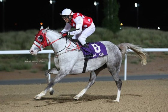 kamil-t-winner