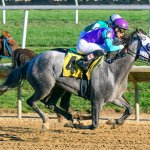 Last Call wins at Delaware park