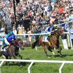 Macallan-winning-the-Zayed-Cup-race