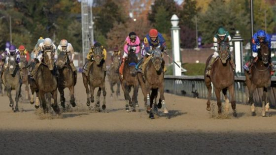 GUNNEVERA and THUNDER SNOW finish 2nd and 3rd to ACCELERATE in the Breeders' Cup Classic (DRC/Mathea)