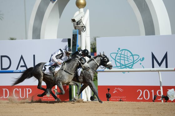 AF Mayer surges to win Kahayla Classic 19 on the rail