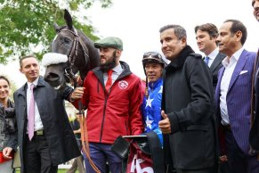 Amyr Du Soleil wins Qatar Arabian Trophy Des Poulains Gr.1PA in Saint Cloud 04/10/2019, photo: Zuzanna Lupa
