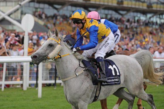 Whitley Meadows Arabians Popsstar and Martin Dwyer winning at Dubai International Arabian Races at Newbury 2019
