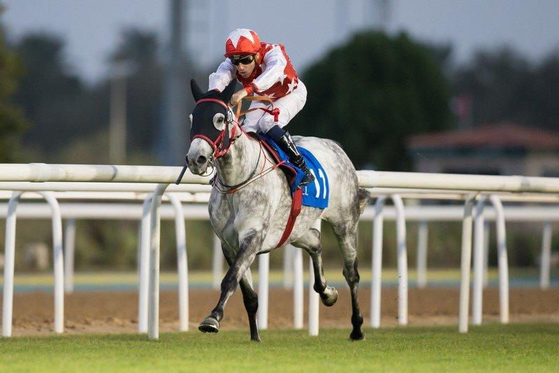 RB Lam Tara winning 26-2-2020 Abu Dhabi