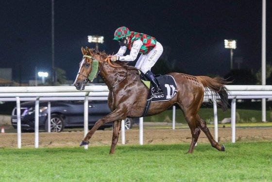 SOMOUD (FR) ridden by Richard Mullen wins the Sheikh bin Sultan Al Nayan Jewel Crown Prep, race 4, at Abu Dhabi, UAE
