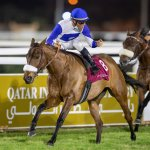 Lady Princess, winner of Qatar Derby Gr2 PA_1.jpg