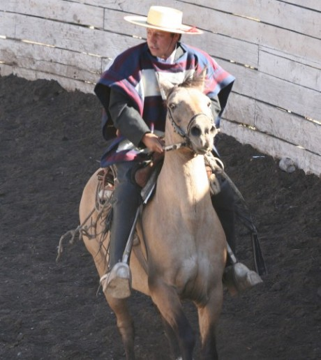 Riding in a Chilean rodeo