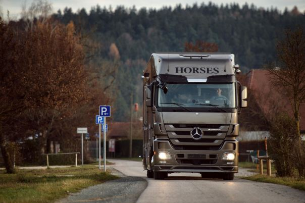 brown-actros-anikotowersphoto-screen-res-72