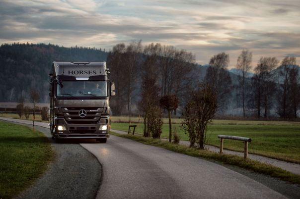 brown-actros-anikotowersphoto-screen-res-75