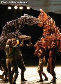 The stars of War Horse