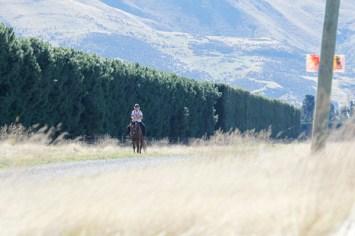 NZ-endurance-champs8247