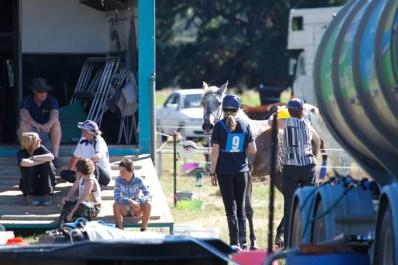 NZ-endurance-champs8267