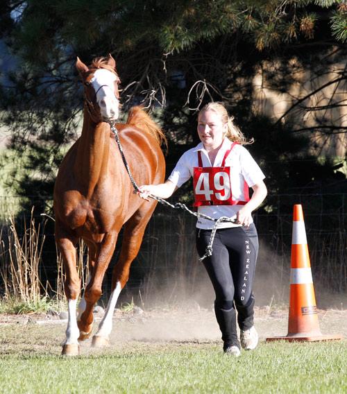 NZ-endurance-champs8642