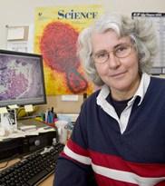 Dr Deborah Middleton