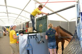 Team Australia decorate their stables, with Lucinda Fredericks giving advice to fellow team rider Christopher Burton.