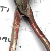 A tool seized in Northland by authorities in 2007 in an illegal castration case.
