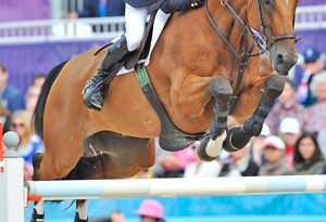 Scott Brash was one of several British medalists who do not come from an equine background. With Hello Sanctos, he was part of Britain's gold-medal winning showjumping team at Greenwich Park.
